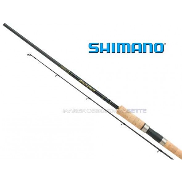 CANNA SPINNING SHIMANO BEASTMASTER DX